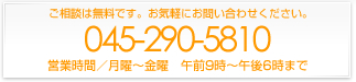 045-290-5810